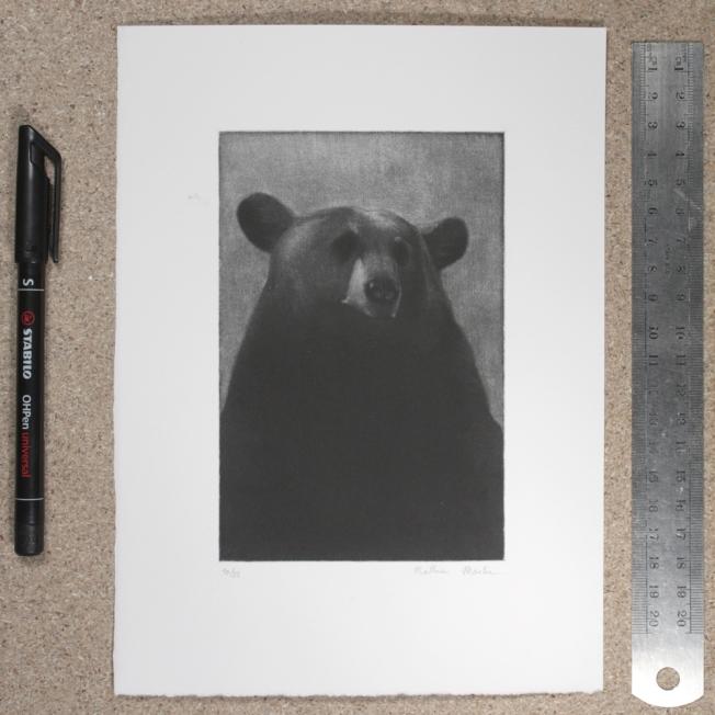mezzotint - 15cm x 10cm